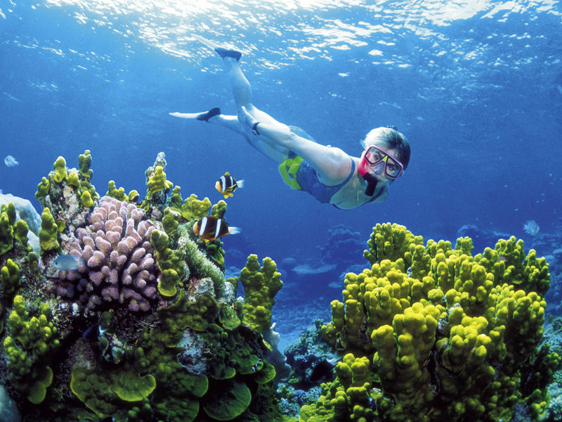 4.Great Barrier Reef second on must-see list
